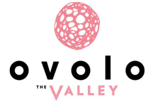 Ovolo The Valley logo