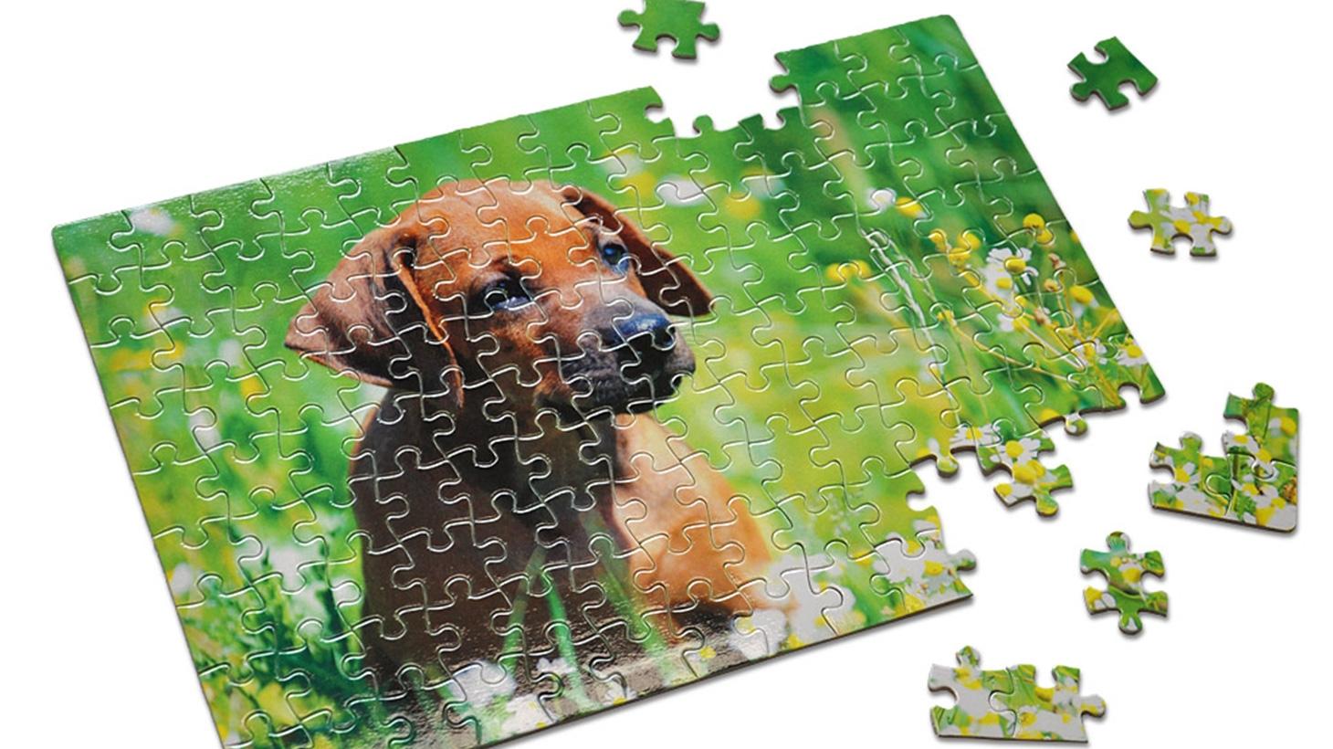 Personalised jigsaw puzzle of dog