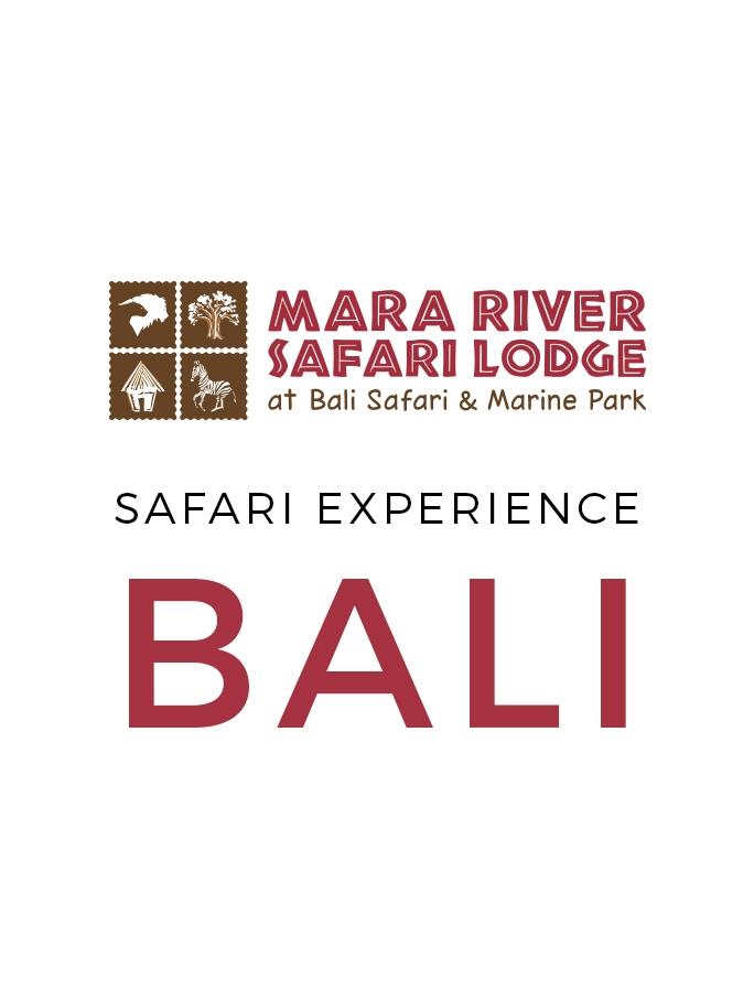 Unique Bali Safari Experience