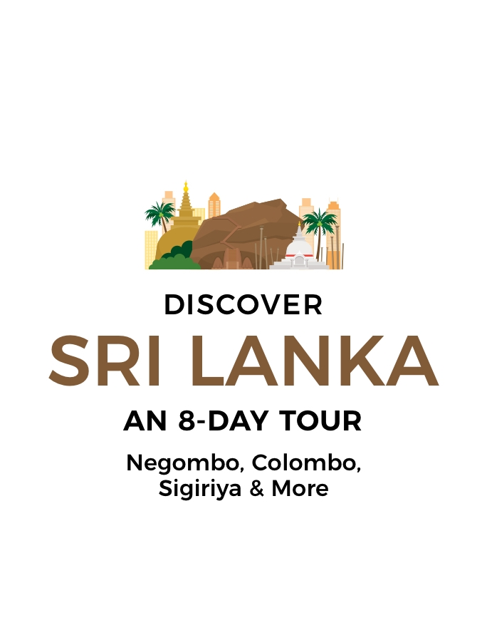 8-Day Sri Lanka Highlights Tour: Negombo, Colombo, Sigiriya & More with Incredible Nature Experiences