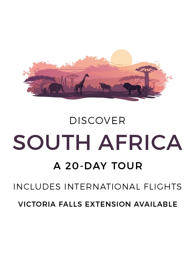 South Africa Safari: 20-Day Tour with International Flights & Optional Victoria Falls Extension