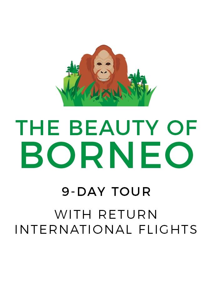 Unforgettable 9-Day Wildlife Tour of Borneo with Return International Flights