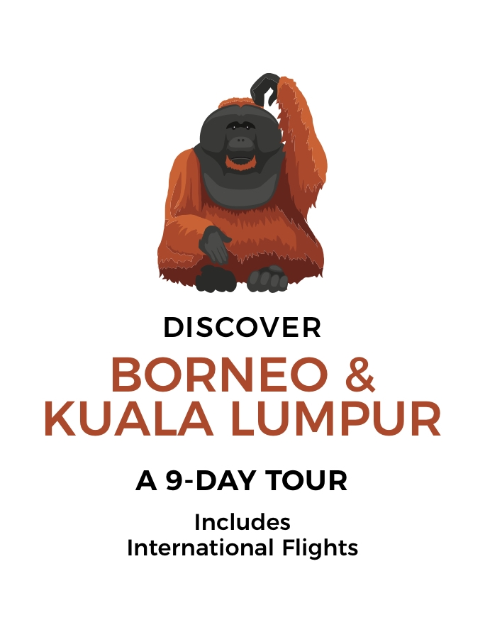 Borneo and Kuala Lumpur: A 9-Day Tour with Orangutan Sanctuary Visit and Return International Flights