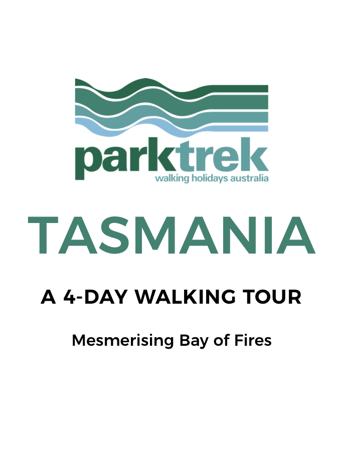 Tasmania's Iconic Bay of Fires: A 4-Day Walking Trek with All Meals Included