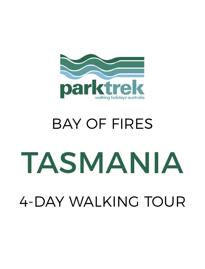 Tasmania's Bay of Fires: 4-Day Walking Tour with All Meals