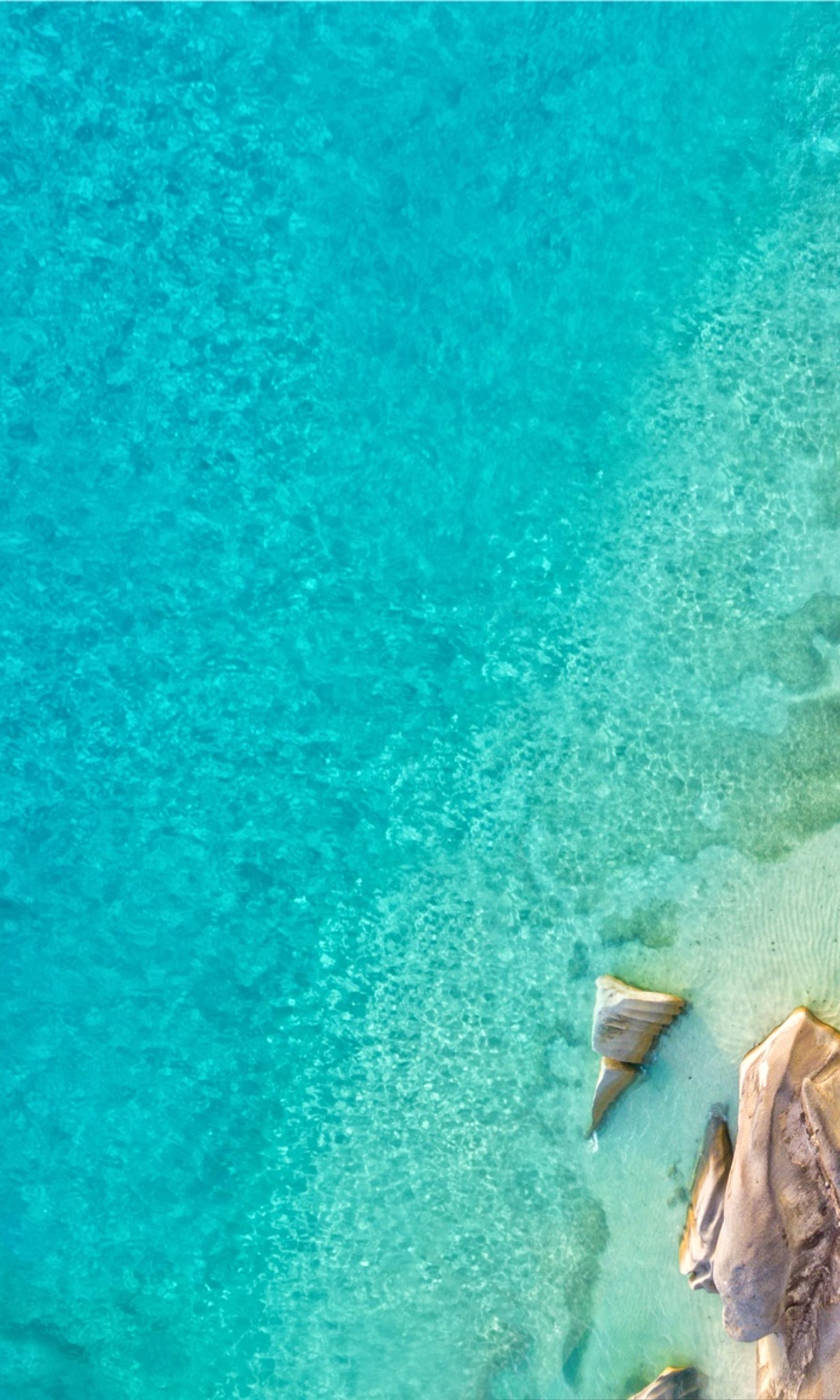 Birds view of paradisiac beach
