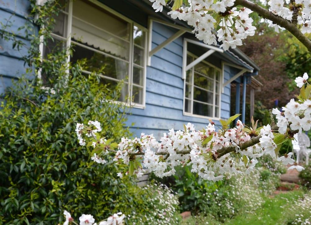 image 1 at Summerhill Farm B&B by 264 Barkers Road Main Ridge VIC Victoria 3781 Australia