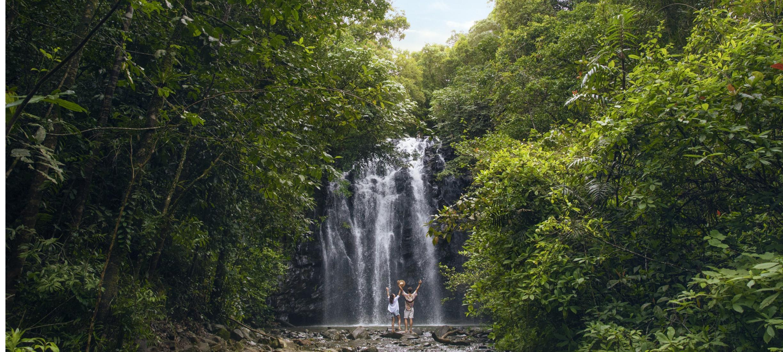 Ellinjaa Falls, Atherton Tablelands