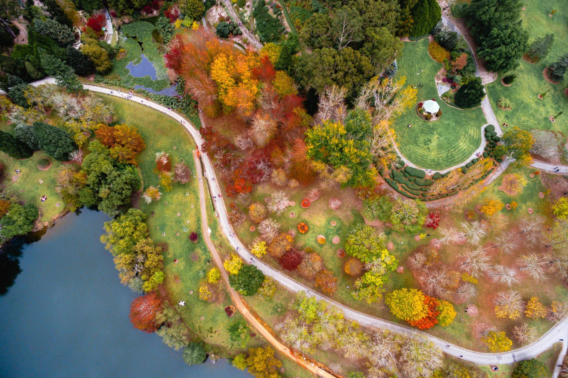 Mount Lofty Botanic Garden Adelaide Hills