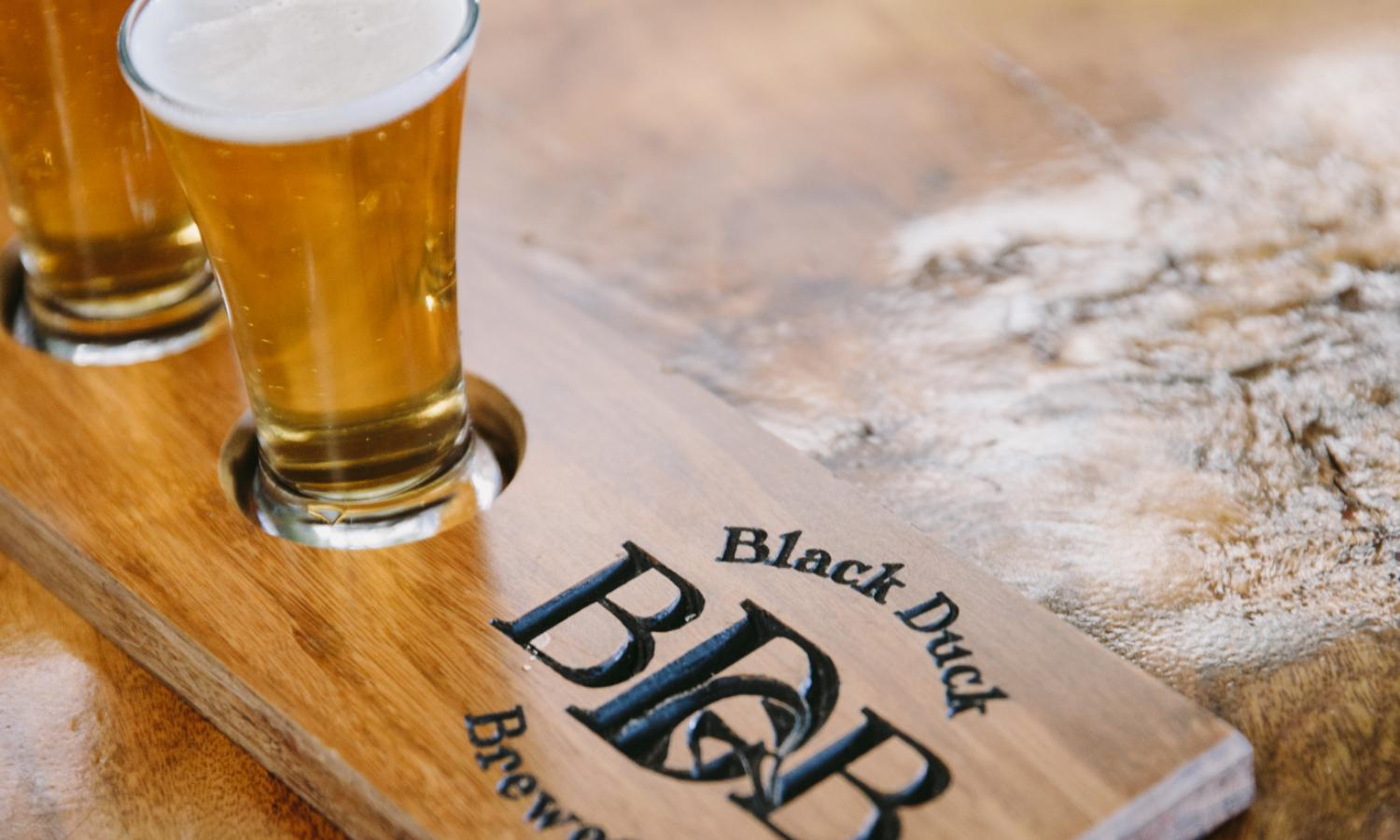 Black Duck Brewery
