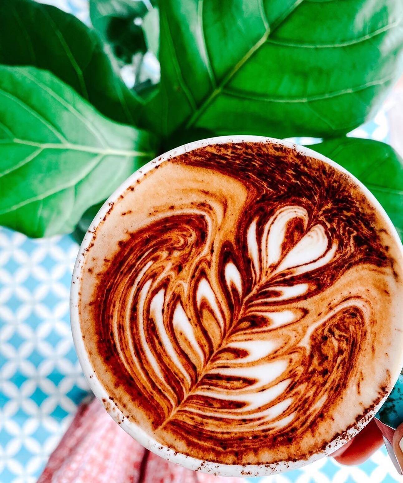 Sparrow Coffee Co