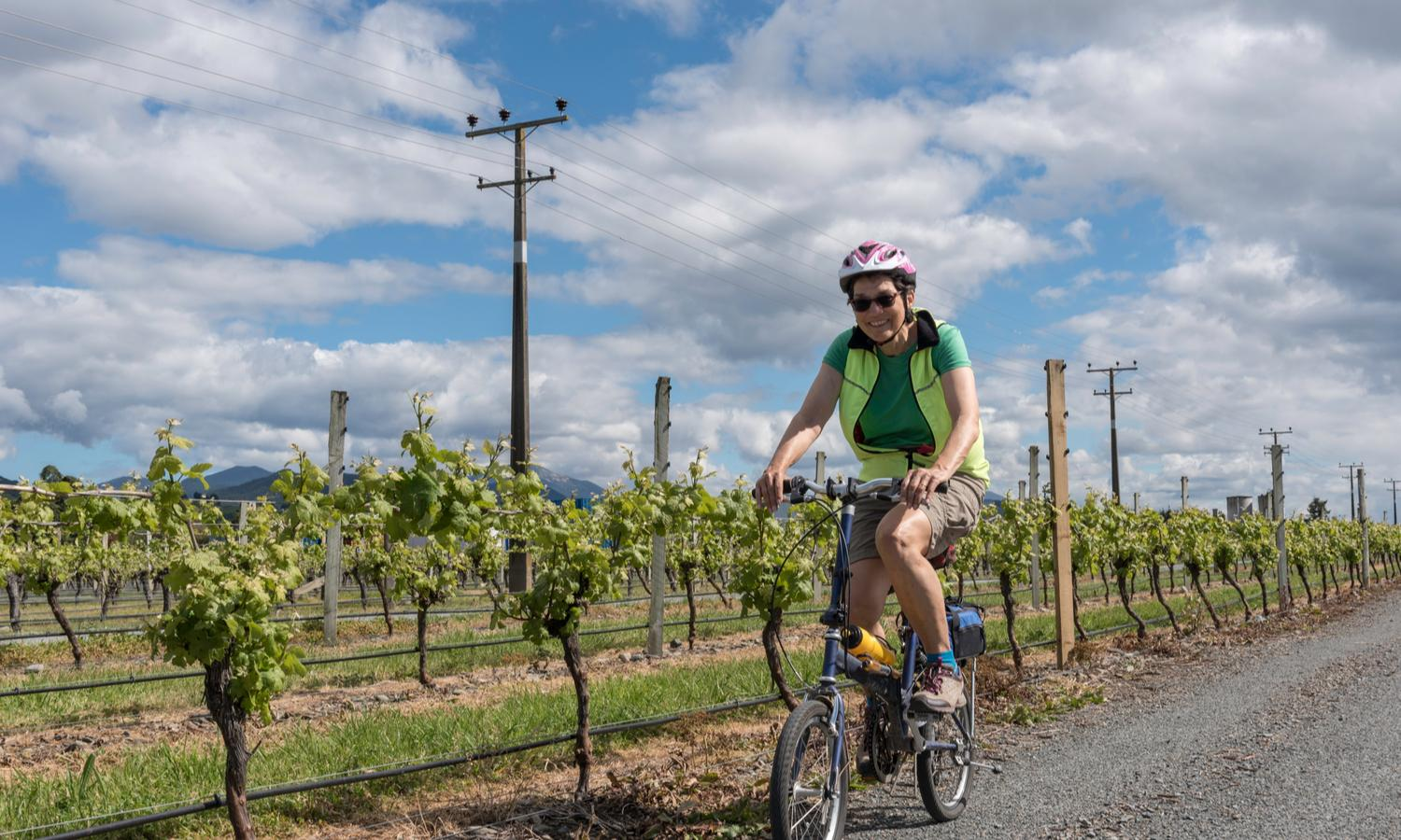 Cycle through the vines